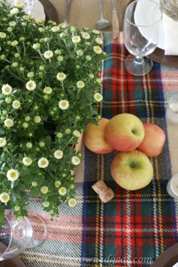 Fall Inspired Tablescape 100815-14