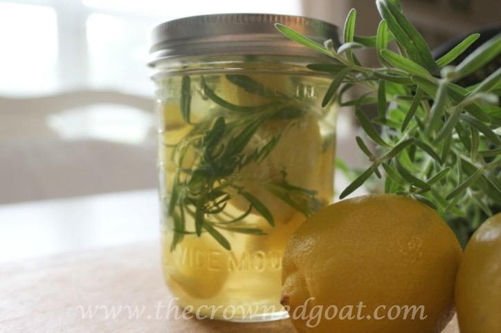 021916-11-10 Citrus Inspired Simmer Pot Recipes