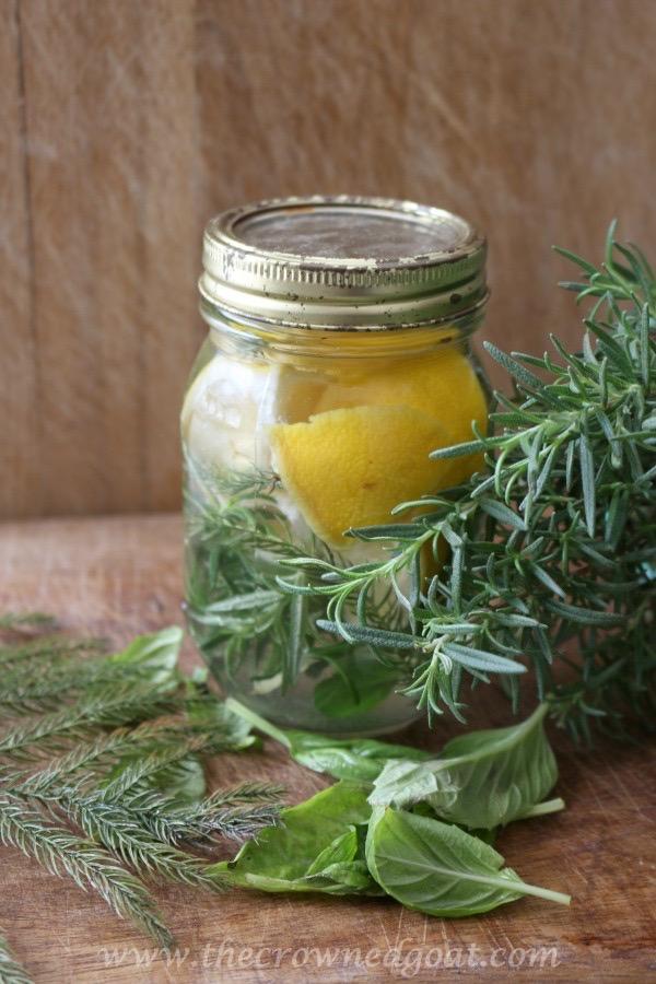 021916-13-10 Citrus Inspired Simmer Pot Recipes