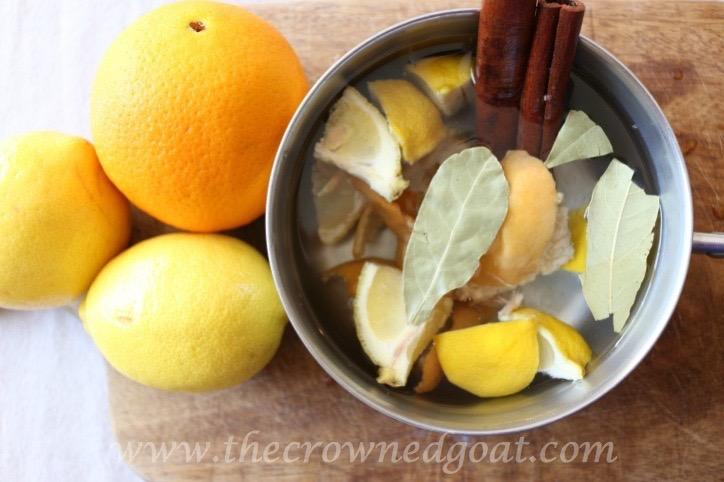 021916-5-10 Citrus Inspired Simmer Pot Recipes