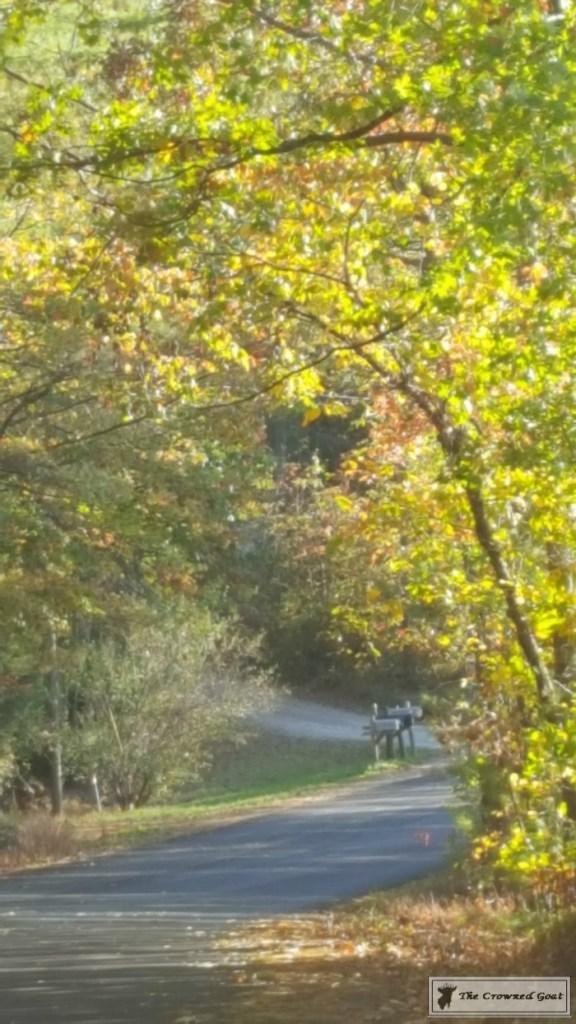fall-in-blue-ridge-14