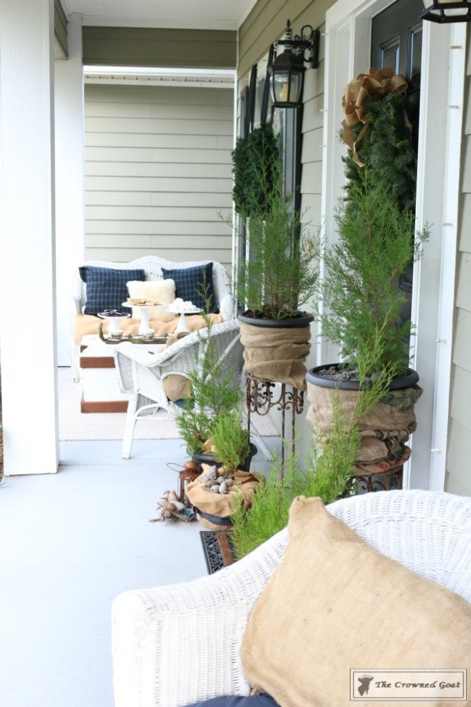 nature-inspired-christmas-front-porch-3