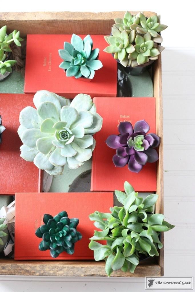 Spring Succulent Centerpiece-6