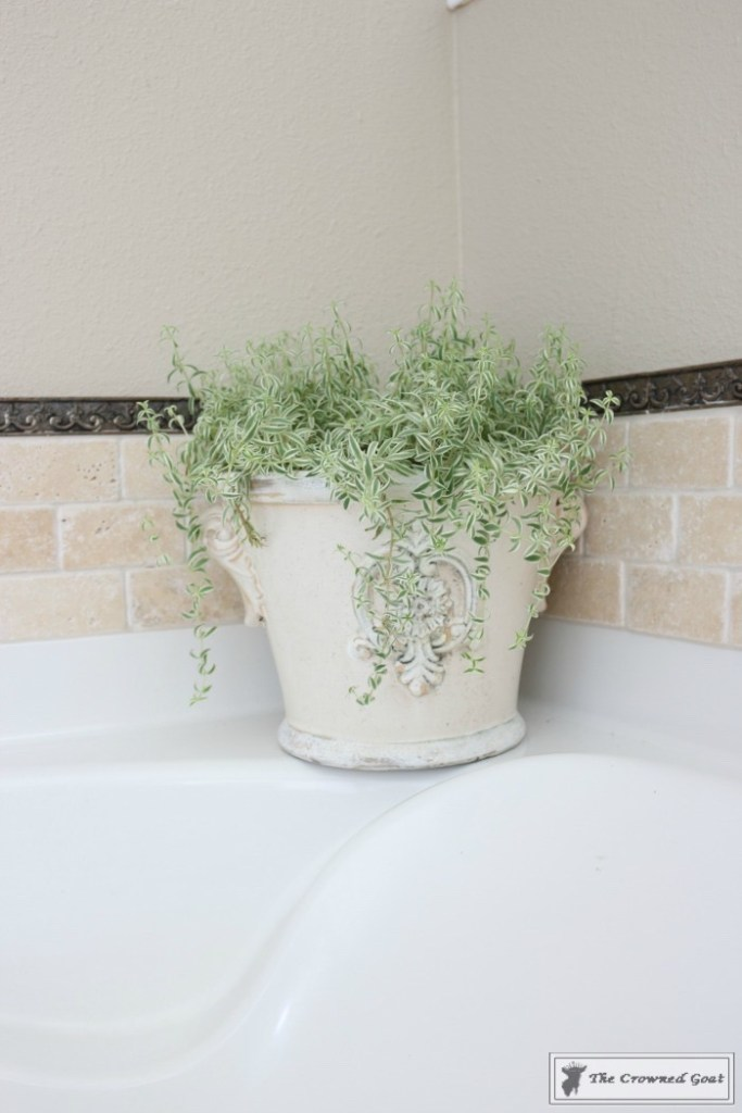 Master Bathroom Makeover-The Crowned Goat-6