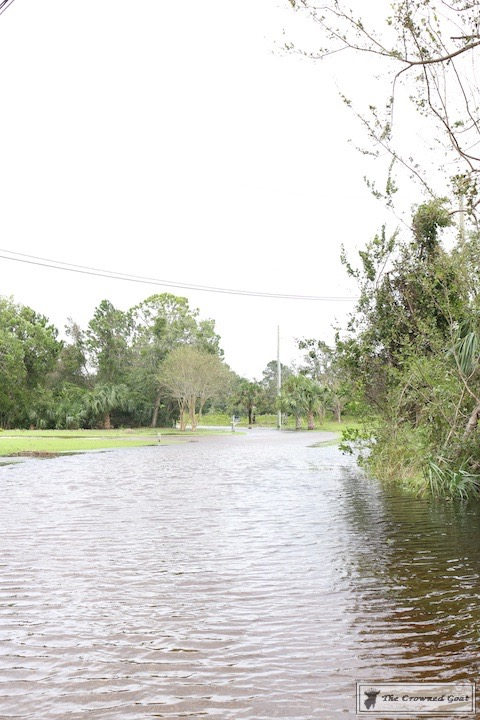Thoughts on Hurricane Irma-8