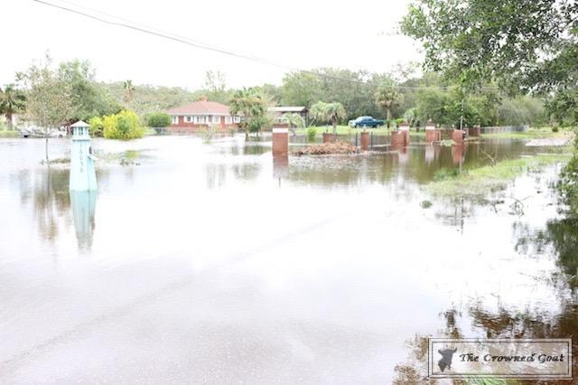 Thoughts on Hurricane Irma-9