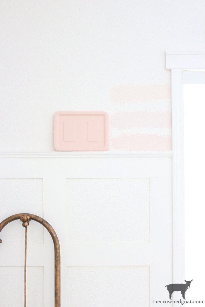 Pink Paint Inspiration - The Crowned Goat