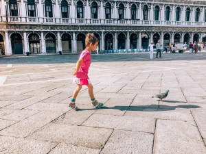 Child Pigeon Venice