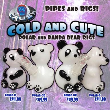 Panda_Bears_CAT