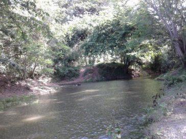 el-rio-chaparra-municipio-jesus-menendez-en-las-tunas-foto-yuslaidys-avila-puig-580x435