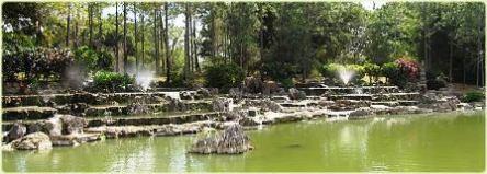 jardín-botánico-nacional-cuba4