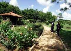 jardin-japones-jardin-botanico-nacional-cuba