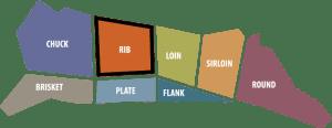 define rib primal