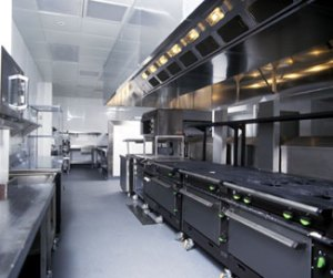 The Professional Kitchen
