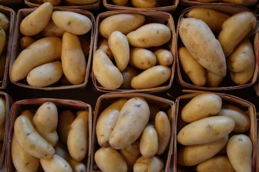 Mr Potato Heads