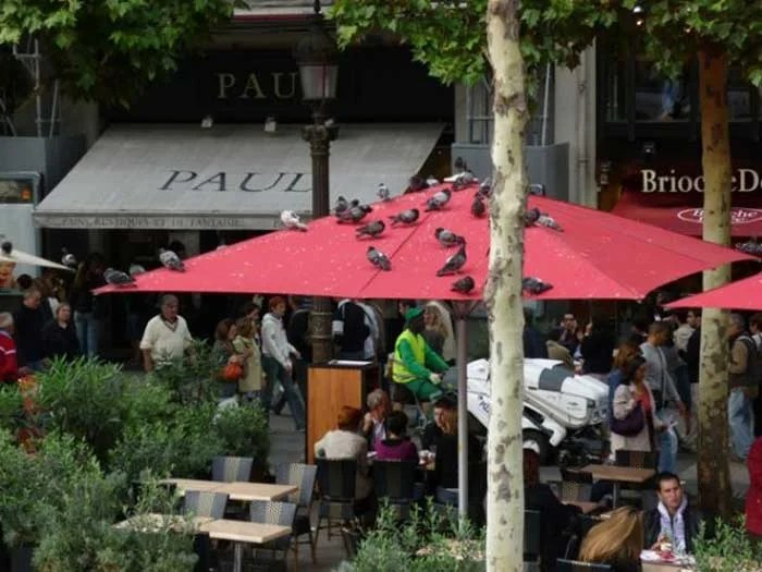 Benjamin Franklin Paris Cafe