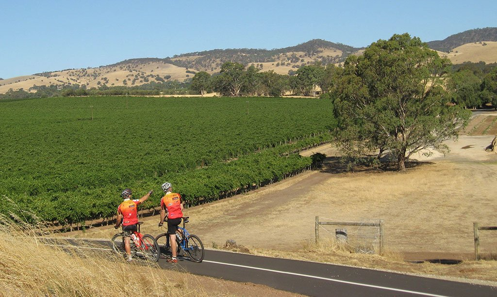 Australia's Best Cycling Trails for Wine Lovers