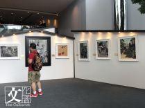 是次展覽將按時序展出龎氏於不同時期、不同地點所創作超過三十幅油畫,概述其油畫藝術的創作歷程。