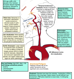 61 vasculitis and giant cell arteritis rheum for improvement the curbsiders [ 791 x 1024 Pixel ]