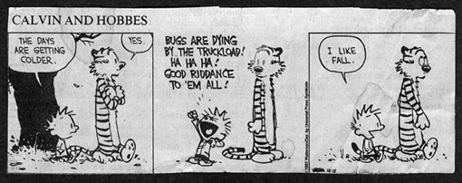 calvin-and-hobbes-web