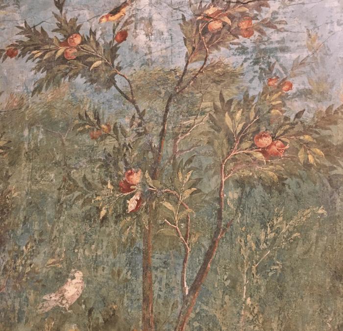 Rome Museums:  Palazzo Massimo