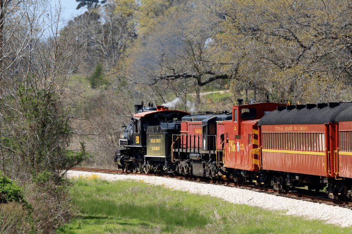 red steam engine train on the tracks in the woods