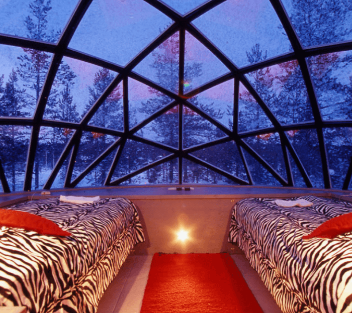 two beds with leopard print spreads under a glass dome roof at night