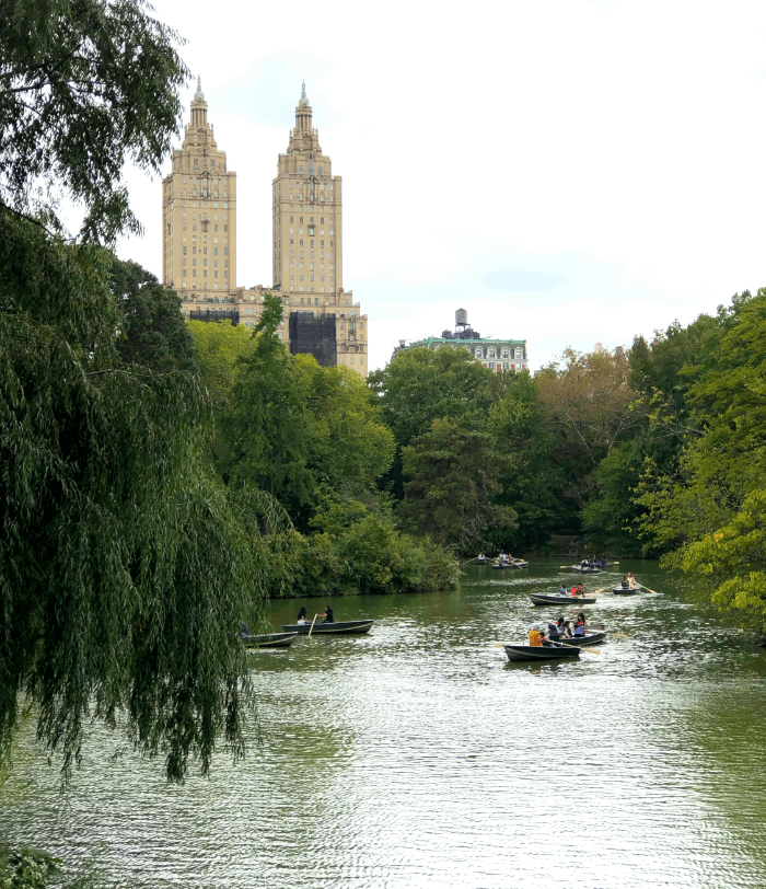 The Central Park Pond with buildings in the distance