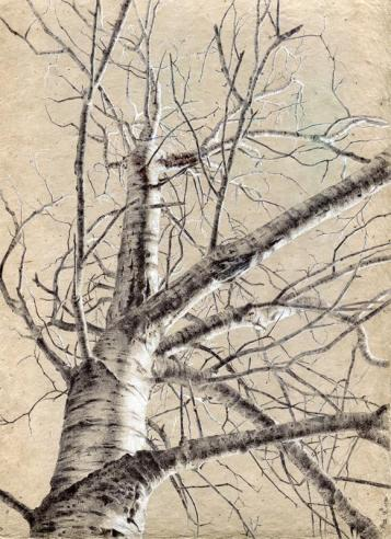 "Dina Brodsky ""Tree No. 93, May 13, 2016"" 2016, ballpoint pen on paper, 12 x 9 inches"