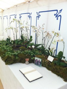 orchids-Phalaenopsis Orchid-curious-gardener-wedding-display