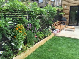 garden design crouch end london (29)