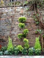 islington gardening services (4)