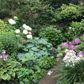 Gardening and Maintenance in Archway, London