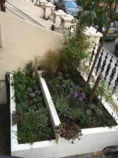 Holland Park gardening services