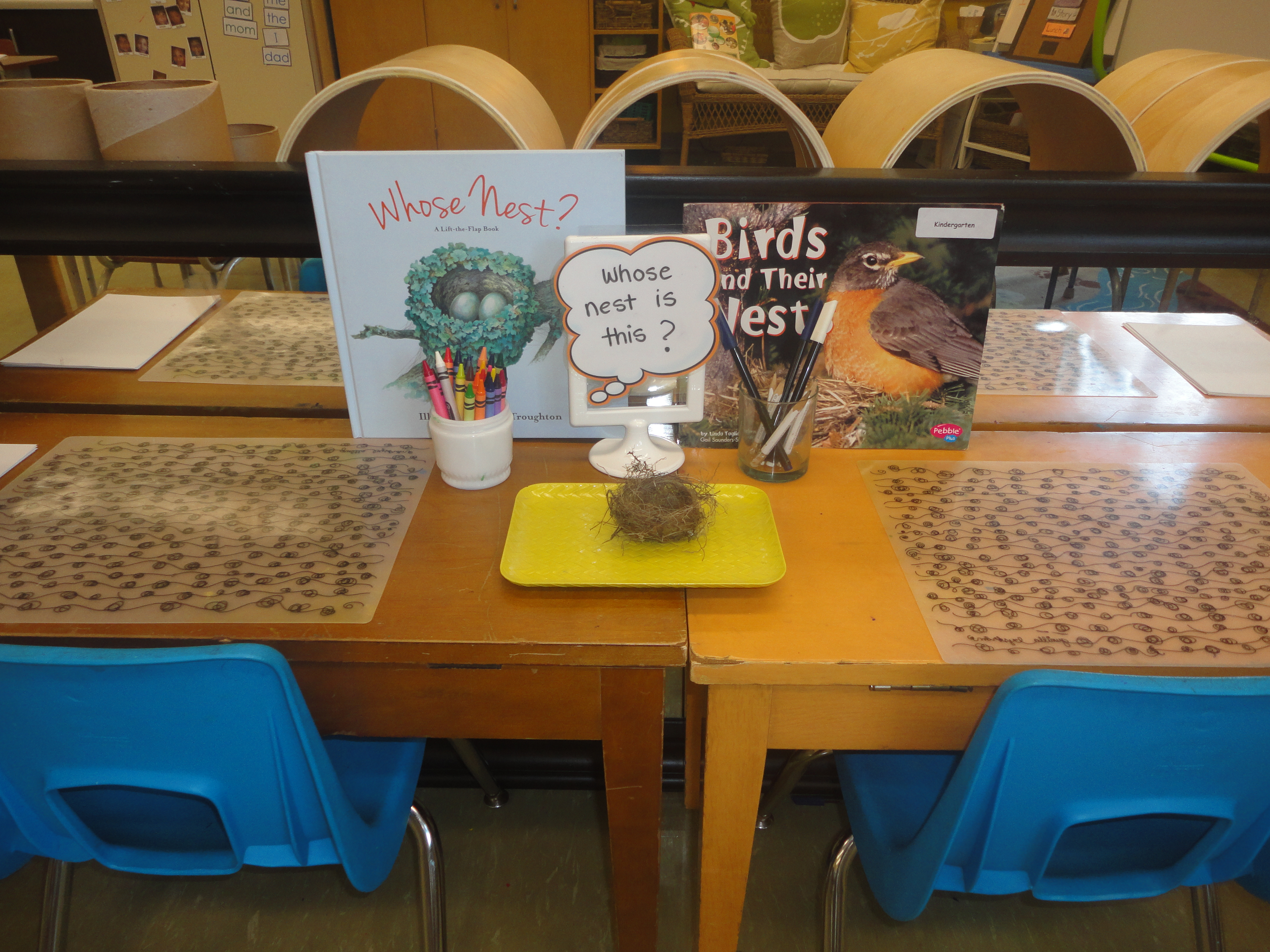 science provocation  The Curious Kindergarten