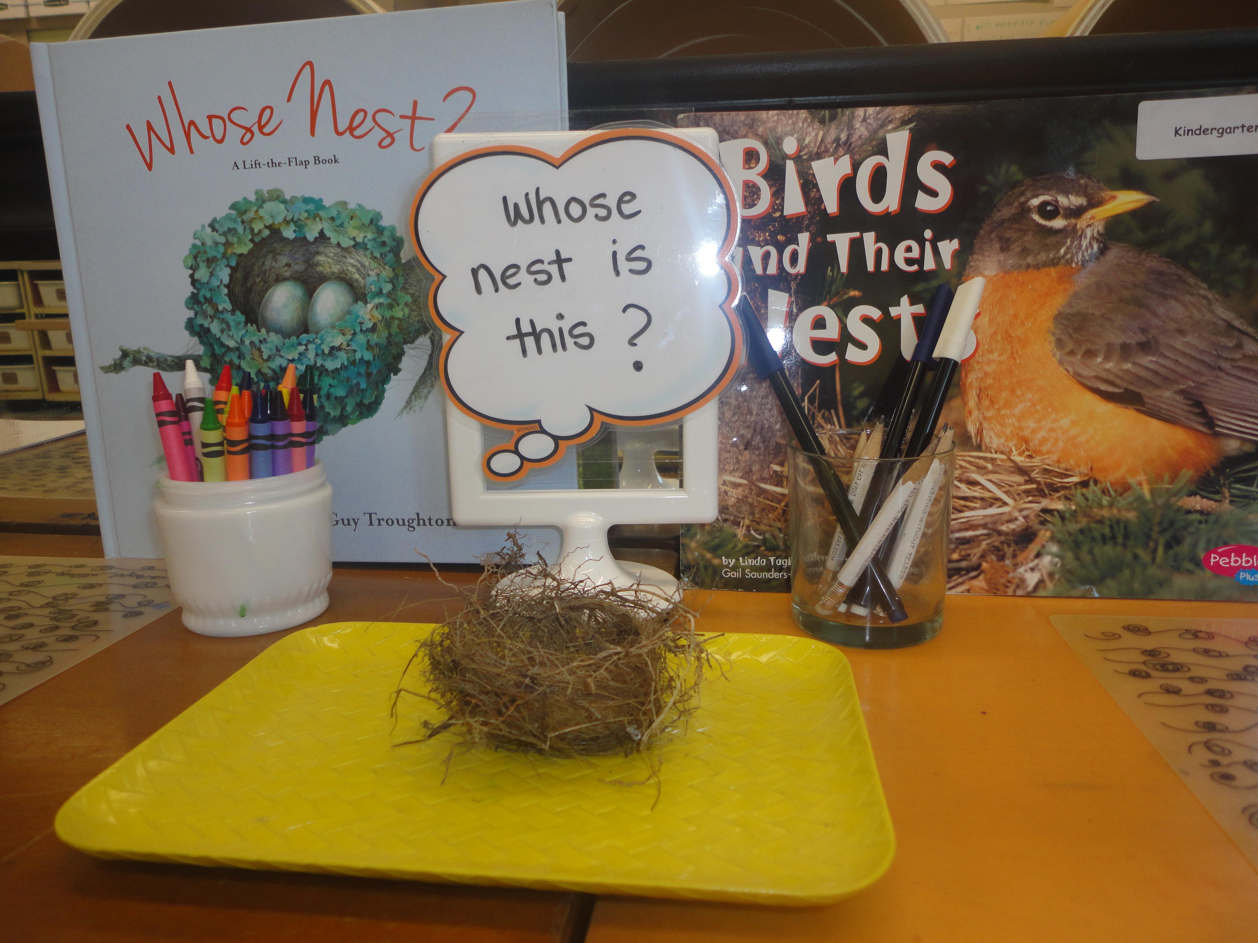 Nest Inquiry