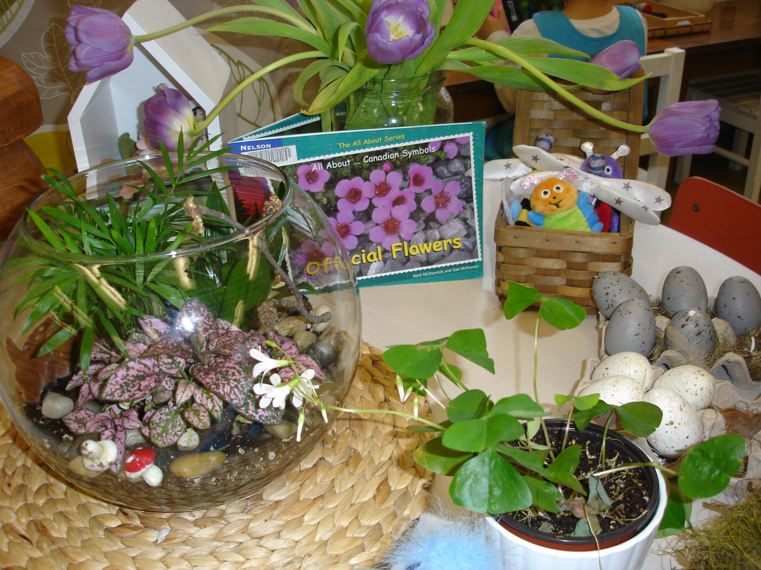 Spring Provocations