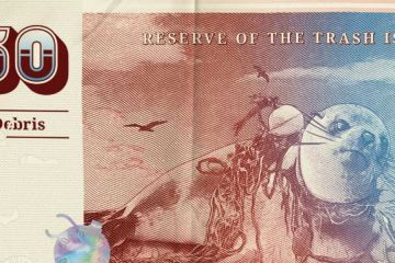 Trash Isles' official currency, 'Debris'