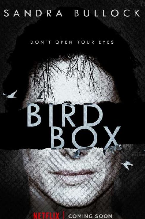 Is the Apocalyptic Sandra Bullock Thriller Birdbox a Hit for Netflix?