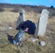 April 2013 - Lough Boora Parklands - the Mesolithic site