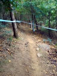 Narrow trails
