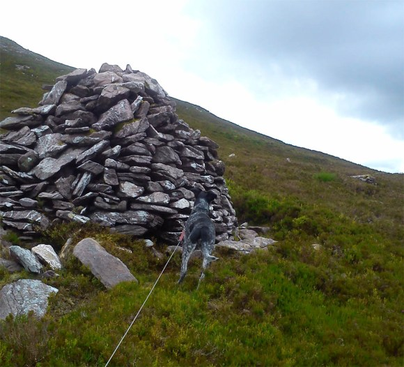 Dolly and a small cairn