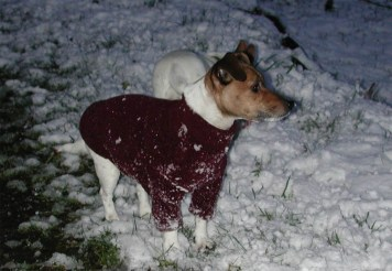 Snow 2005 3