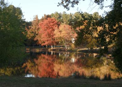 maynard-pond-autumn