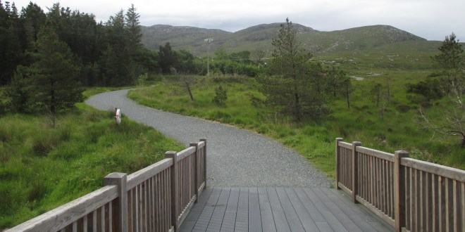 The cycle path towards Glenveigh Castle