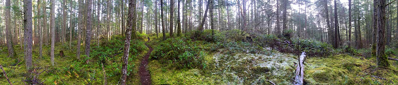 Bear Mountain Bike Trails
