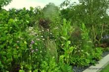 Plants stuffed in.