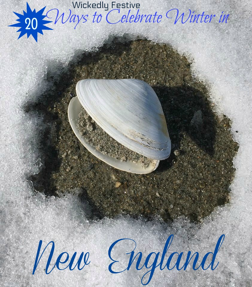 things to do in New England in winter