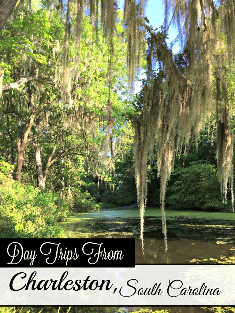 Plantations, Slavery and wildlife tours-- even the US' only running tea plantation. Read on to make the most of your time in Charleston, SC. A weekend in Charleston, SC. #southernUS #thesouth #USTravel #daytripsfromCharlestonSC