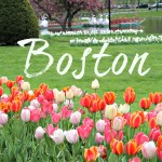 Boston in Bloom: Boston Public Gardens, Trinity Church and Beacon Hill